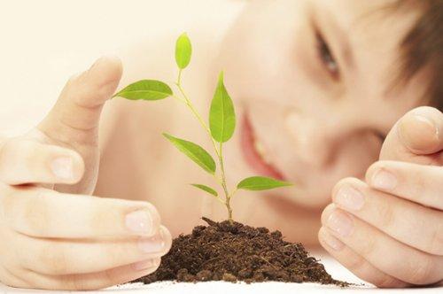 Crecer en Salud