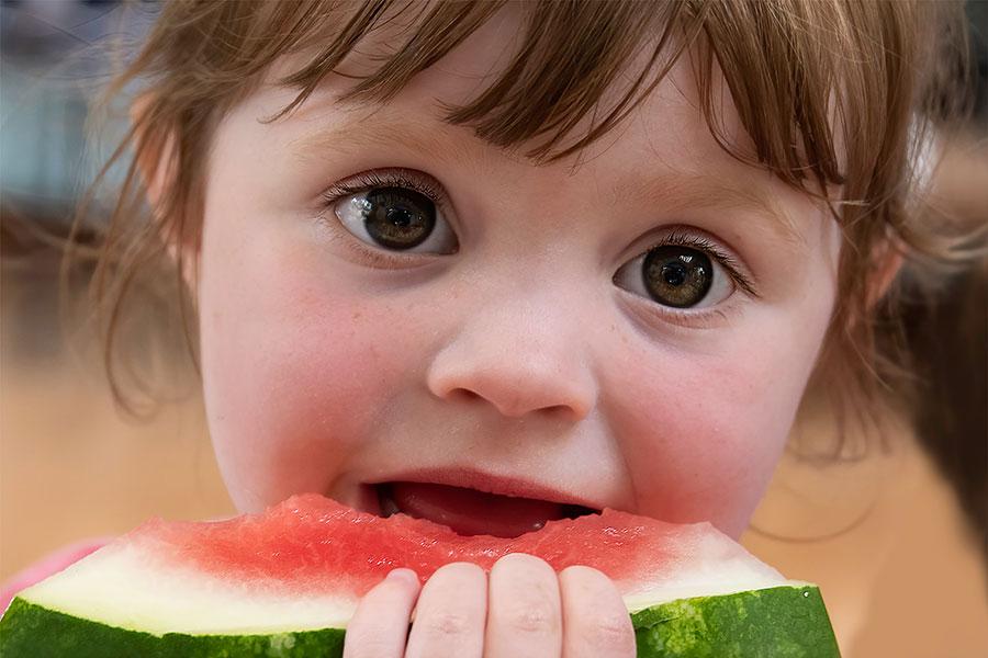 Programa de Nutrición de Crecer en Salud Brain Centers
